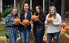 7 Activities To Do This Fall