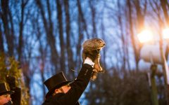 Punxsutawney Phil's Forecasts